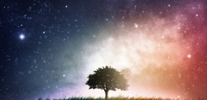 Cosmos sky with tree - Conscious Life Events