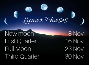 November lunar phases image